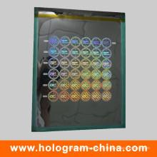 Матричный лазерный голографический безопасности Мастер