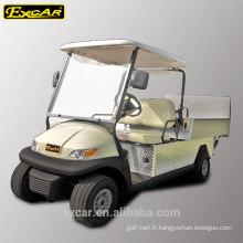 Type de carburant électrique et 2 sièges pas cher Chine chariot de golf électrique à vendre
