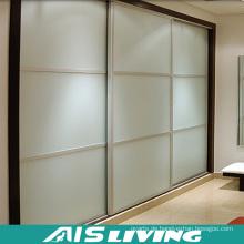Doppelte Farbe Kleiderschrank Design Kleiderschrank Möbel (AIS-K019)
