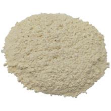 Dehydriertes weißes Knoblauchpulver