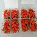 Ningxia Organnic goji जामुन superfruit wolfberry