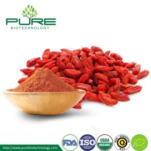 Ningxia Organic Goji Berry Powder 2017 พืชผลใหม่