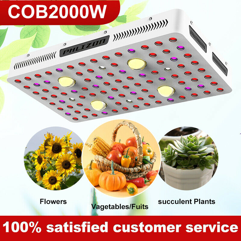 2000W COB LED Grow Light