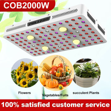 2000w Cob Plant Grow Light Hydroponic Vagitables