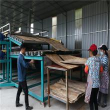 Fortschrittliche und hochwertige Furniertrocknungsmaschine