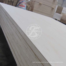 High Quality HPL Plywood For Israel Market