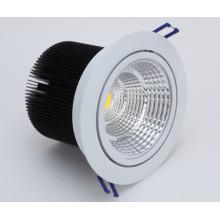 20W COB Warm White 220V LED Ceiling Lamp