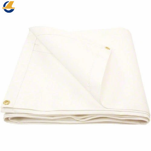Dutarp Cotton Canvas Plane