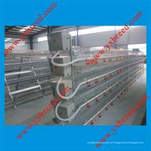 Automatische Geflügelschicht Broiler Hühnerkäfig (H4L80)