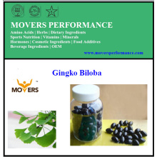 Gingko Biloba / Capsules de légumes / Sans conservateurs