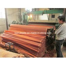 0,3 mm Schälfurnier Holz für die Herstellung von Sperrholz