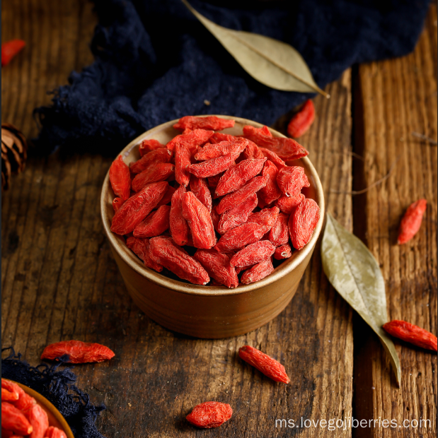 Berry goji merah Ningxia Original 2018 New Harvest
