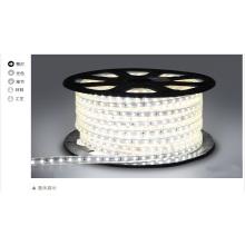 Lampe LED 220V 2835SMD Bande LED Lumière LED