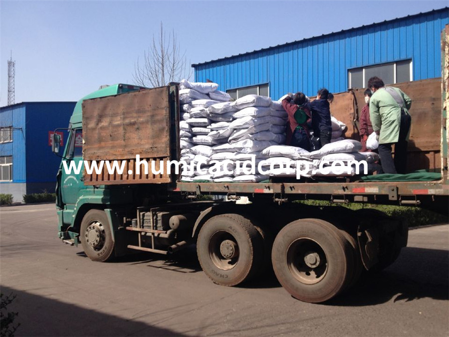 Potassium Sodium Humate Soluble Humic Acid