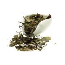 2016 Thé vert aux poitrines chinoises biologiques et au thé à la mode