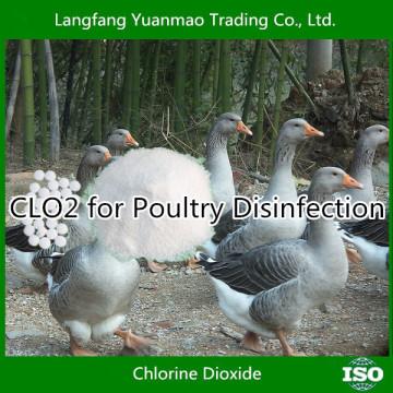 Désinfectant à base de dioxyde de chlore de haute qualité pour la désinfection des volailles