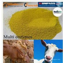 Besseres Thermolestability Feed Grade Wiederkäuer Spezialisiertes Multienzym während der Pelletierungsprozesse