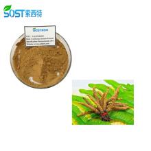 Healthcare Supplement Cordyceps Militaris Extract Powder