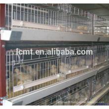 hangar de contrôle de volaille équipements complets pour cage de poulet