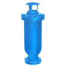 Stahlguss mit Lackiereinsatz für Abwasserluftventil