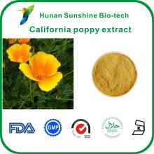 Bonne solubilité dans l'eau california pavot Eschscholzia californica Extrait Poudre