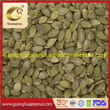 Healthy Salted Delicious Tasty Cheap New Crop New Fragrance Shine Skin Pumpkin Seed Kernels