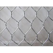 Chicken Wire Mesh and Galvanized Hexagonal Iron Wire Netting