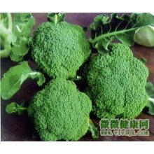chinese fresh green broccoli flower