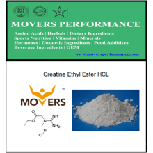 Creatina Ethyl Ester HCl con CAS No: 15366-32-2