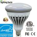 5 лет гарантии bluetooth Dimmable Bulb 2835SMD 20W R40 LED Bulb Light