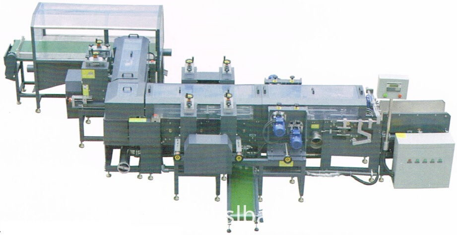 Automatic Plate Cutting and Lug Brushing Machine