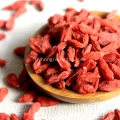 Une herbe tonique superfruit goji baies wolfberries