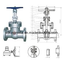 Válvula de aço API 300lb de aço fundido