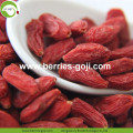 Nouvelle récolte Super Food Dried Bayas goji