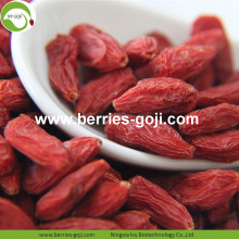 New Harvest Super Food getrocknete Bayas Goji