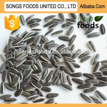 Chinese High Quality Roasted Sunflower Seeds