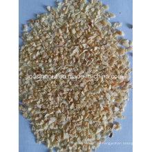 Nuevos granos deshidratados de ajo (8-16mesh)