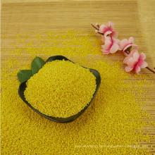 2016 milho painço amarelo pegajoso glutinoso da colheita para o bolo de arroz