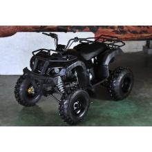 150cc ATV Utility camino con revés (MDL 150 AUG)