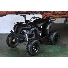 150cc off Road Utility ATV with Reverse (MDL 150AUG)