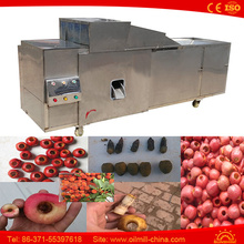100kg Stainless Steel Date Olive Pitter Machine Olive Pitting Machine