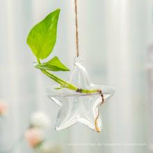 Hängende Glaspflanzgefäße in Sternform, Hydroponische Glasvasen-Terrarien, Glasblumentopf
