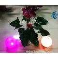 Popular LED Light Ball