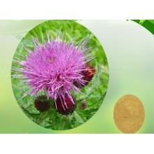 Liver Disease and Cardiovascular Disease Milk Thistle Extract