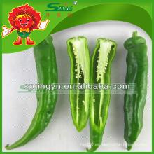 Chiles verdes frescos