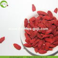Fuente de la fábrica Natural Fruit Products Bulk Goji Bayas