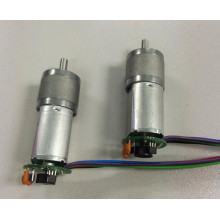 Permanent magnet 12v dc motor with gearbox