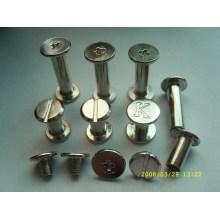 fashion new stainless chicago screws / menu screws /book screws