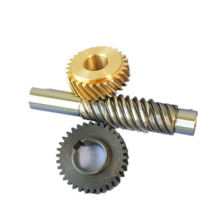 Manufacturer custom  worm gear reversible mini worm gear
