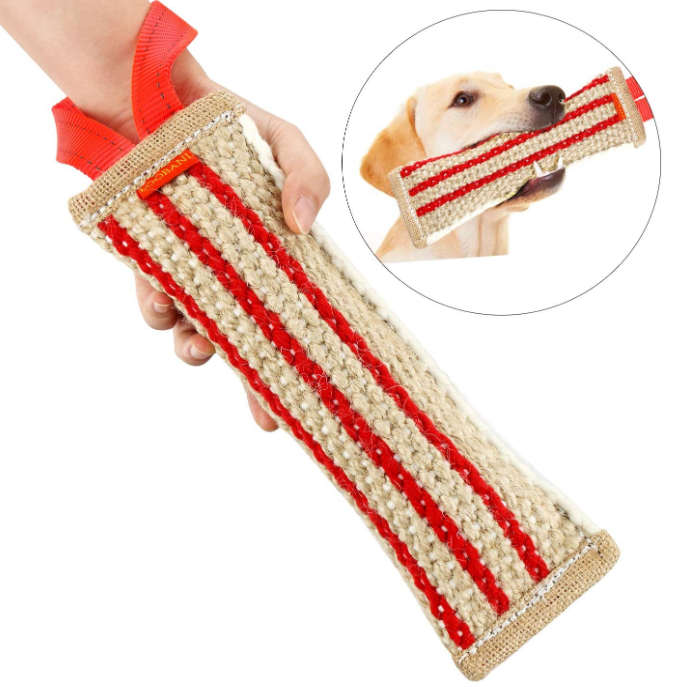 Interactive Dog Chew Toy